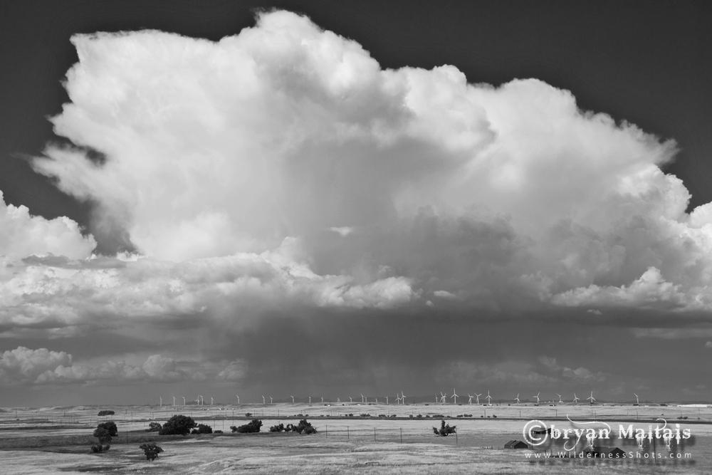 Cumulonimbus Cloud Black and White