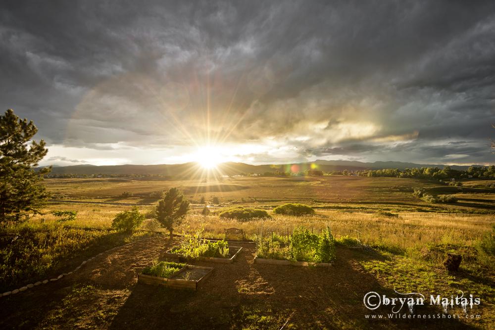 Fort Collins Garden Sunset Colorado