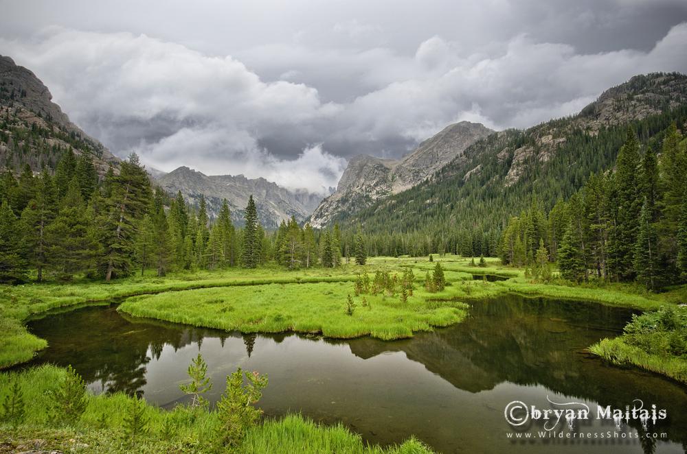Indian Peaks Wilderness Wetland