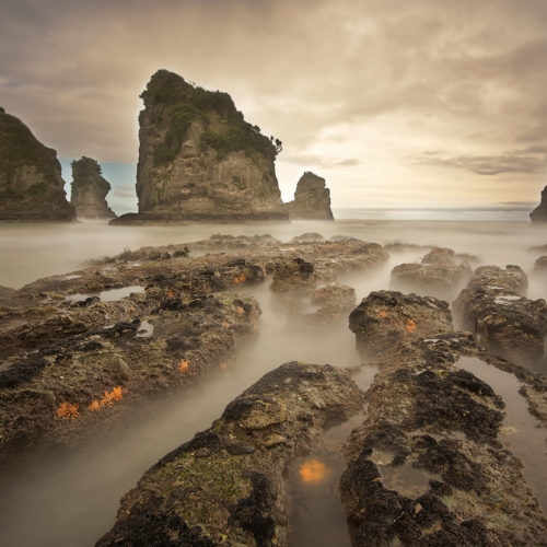 Moutekeikei Beach New Zealand
