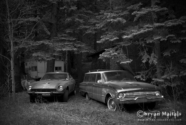 Old Junker Cars in Forest Black and White