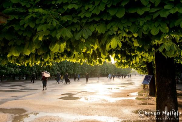 Tuileries Garden, Paris France