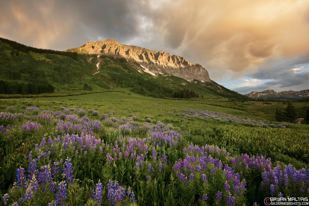 crested butte photography colorado