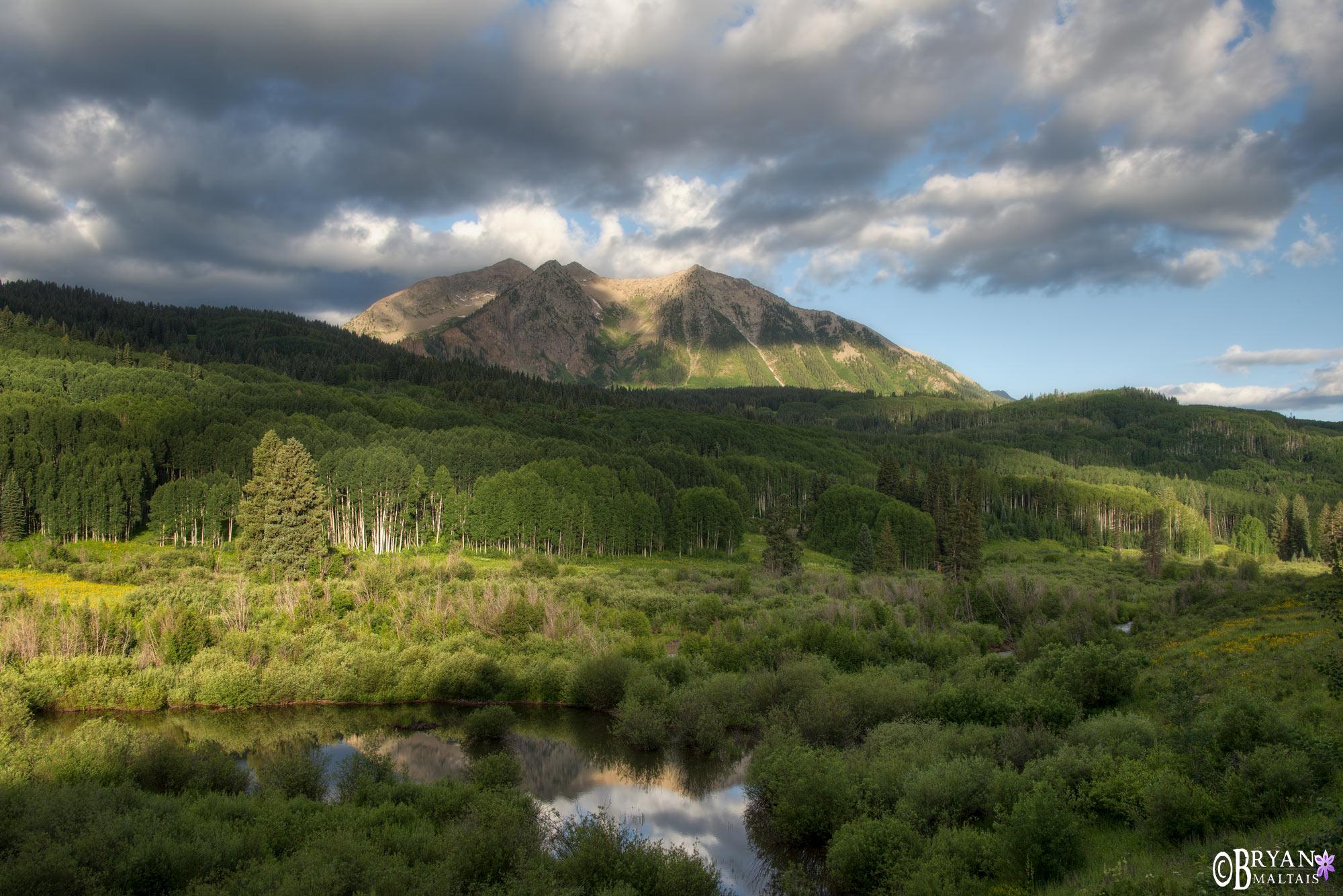 Beckwith Mountain Kebler Pass Rd Crested Butte Colorado