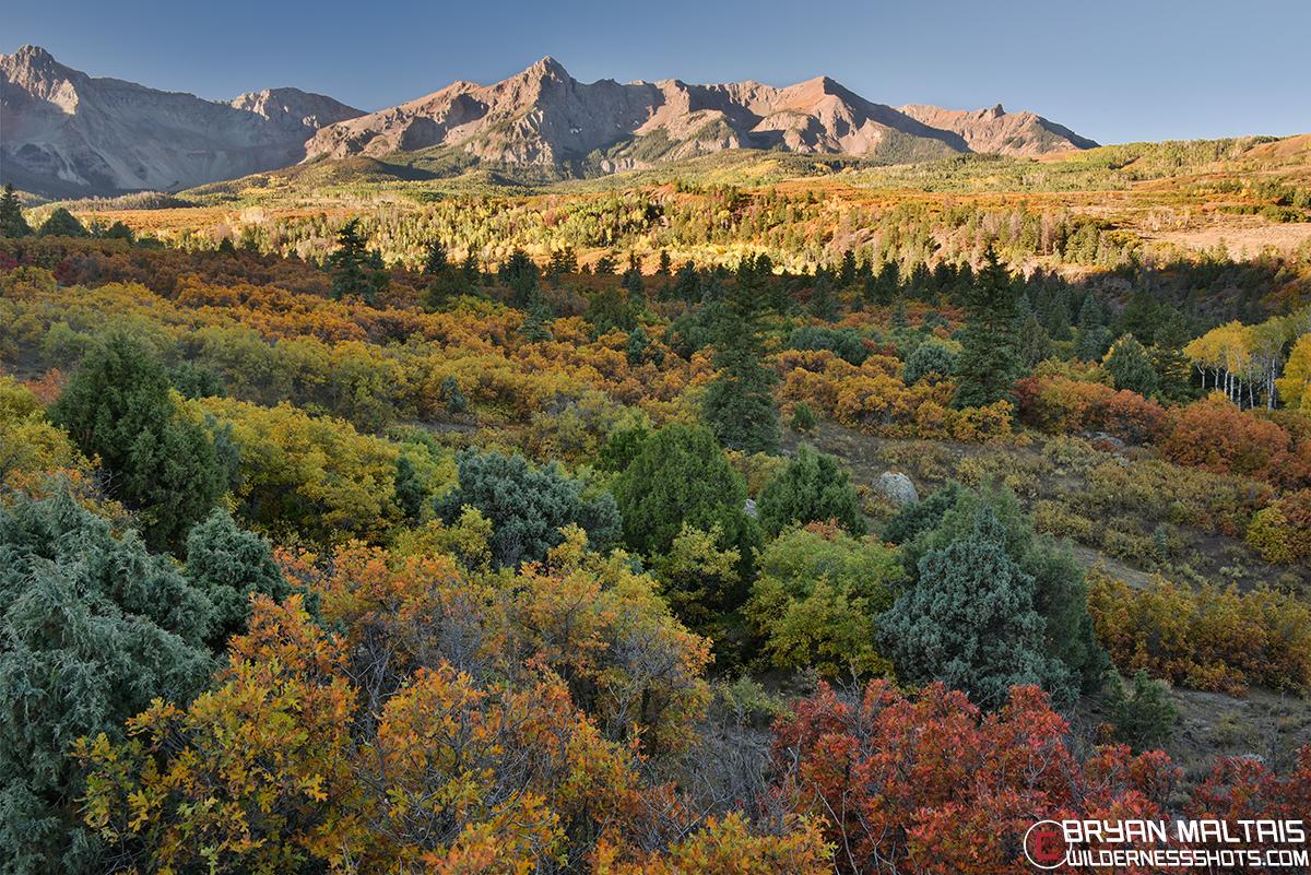 Dallas Divide Colorado Fall Colors