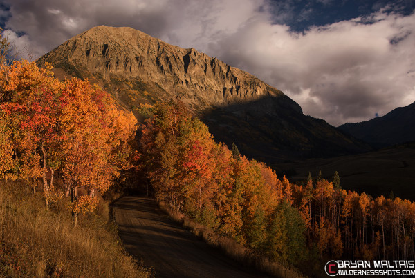 Gothic Mountain Fall Colors Crested Butte Colorado