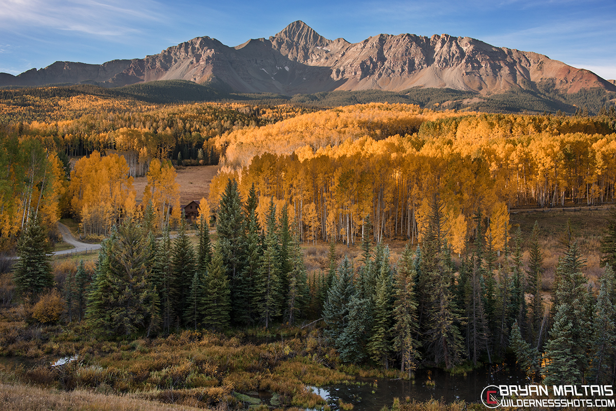 Mt Wilson Colorado Fall Colors standard