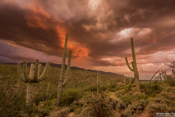 Arizona Utah Landscape Photography