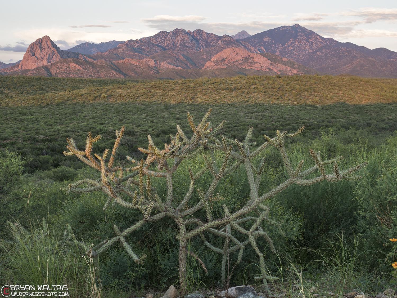 tucson santa rita mountains arizona