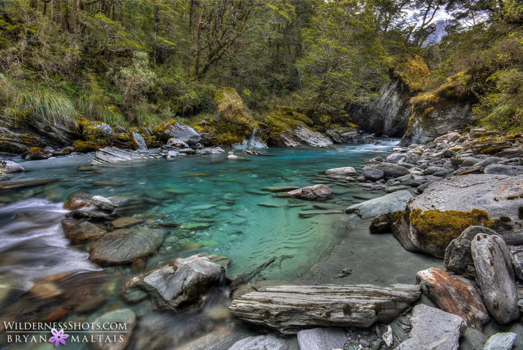 Rob Roy Stream New Zealand Landscape Photography