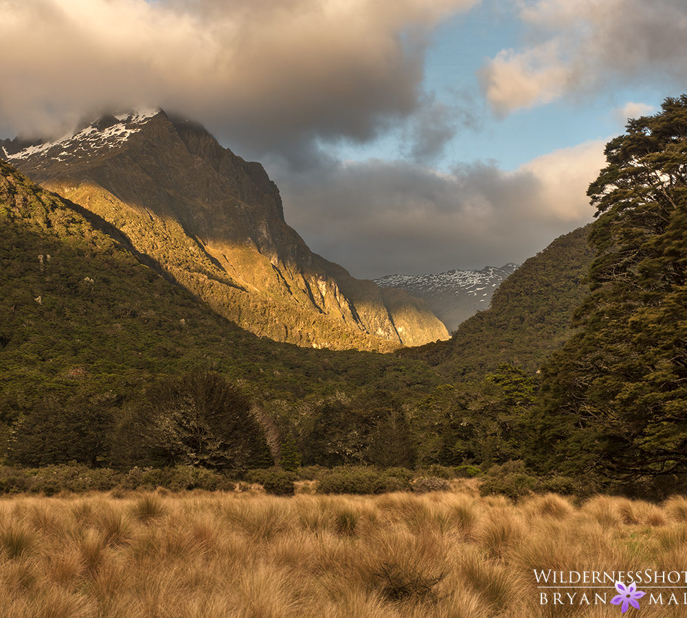 Iris Burn Kepler Track New Zealand Photography