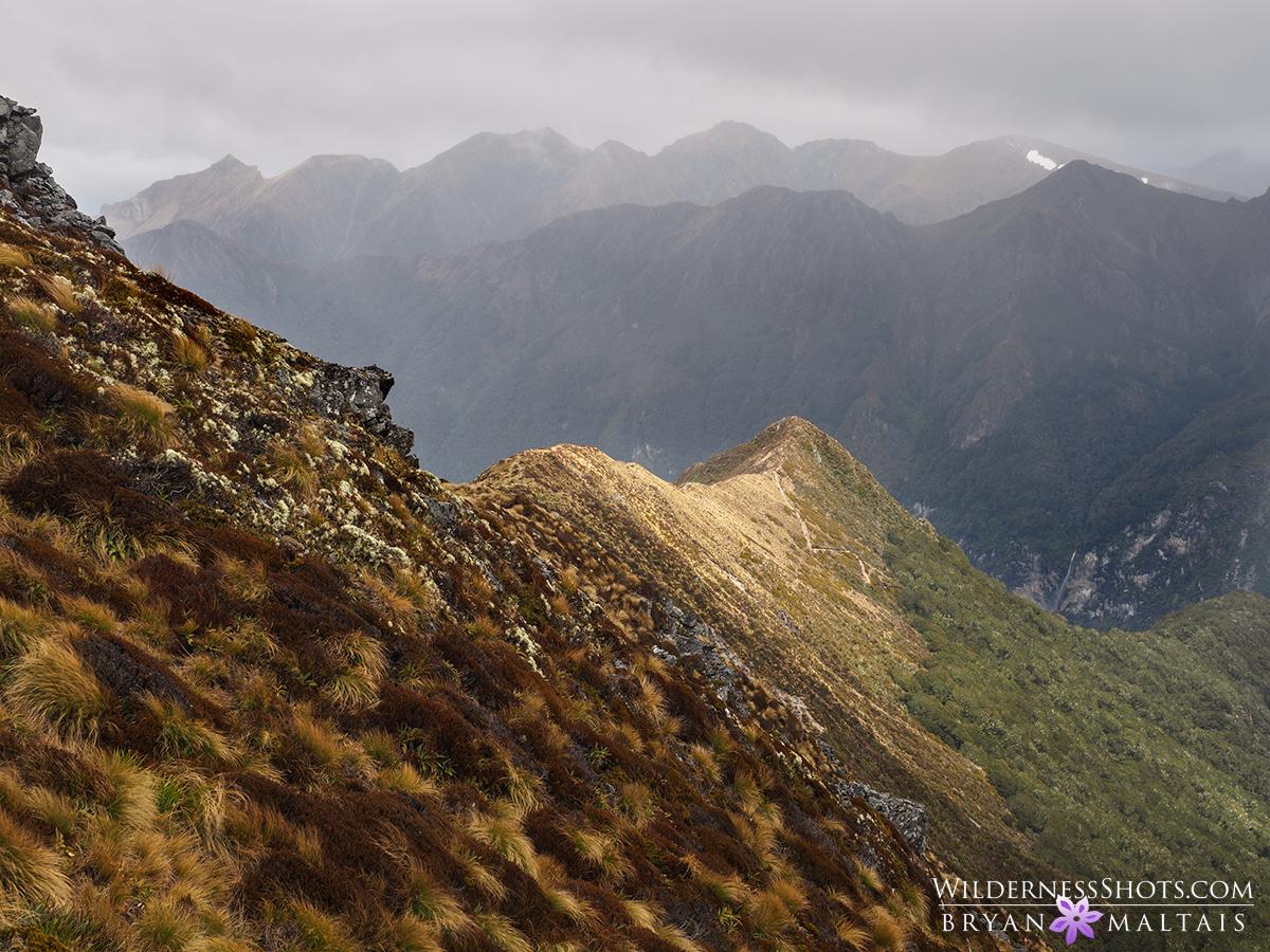 Kepler Track New Zealand Photography