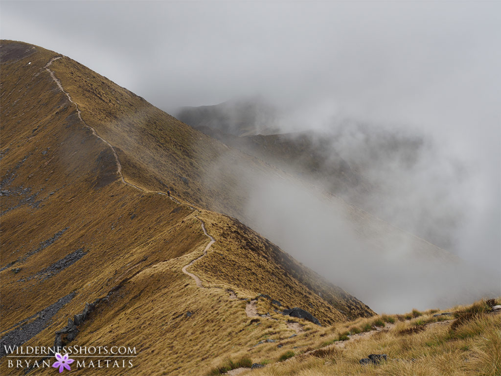 Keppler Track Saddle New Zealand Landscape Photography