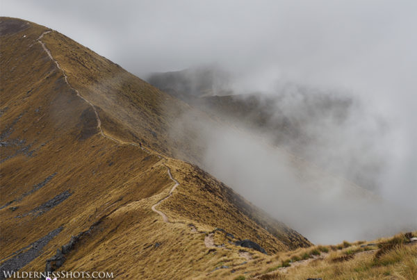 Keppler Track Saddle New Zealand Landscape Photography