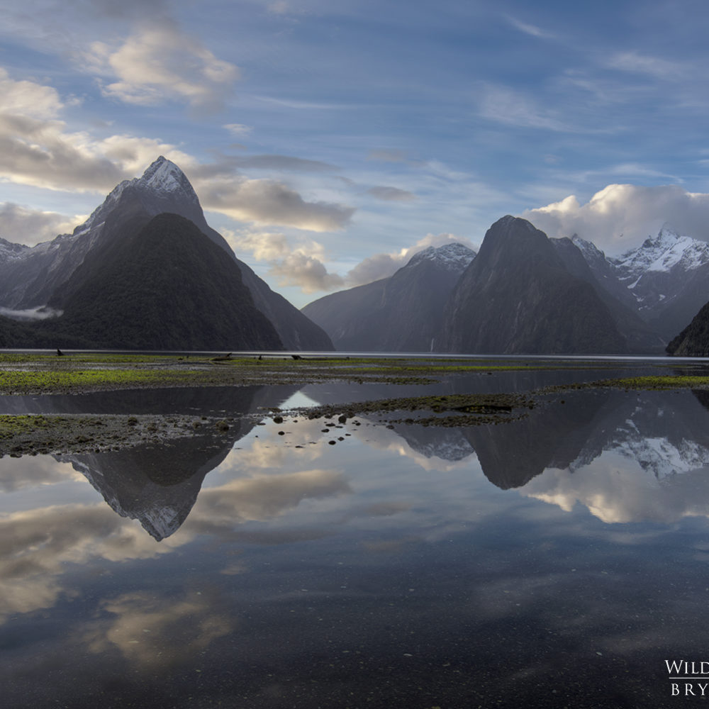 Milford Sound Reflection New Zealand Photography