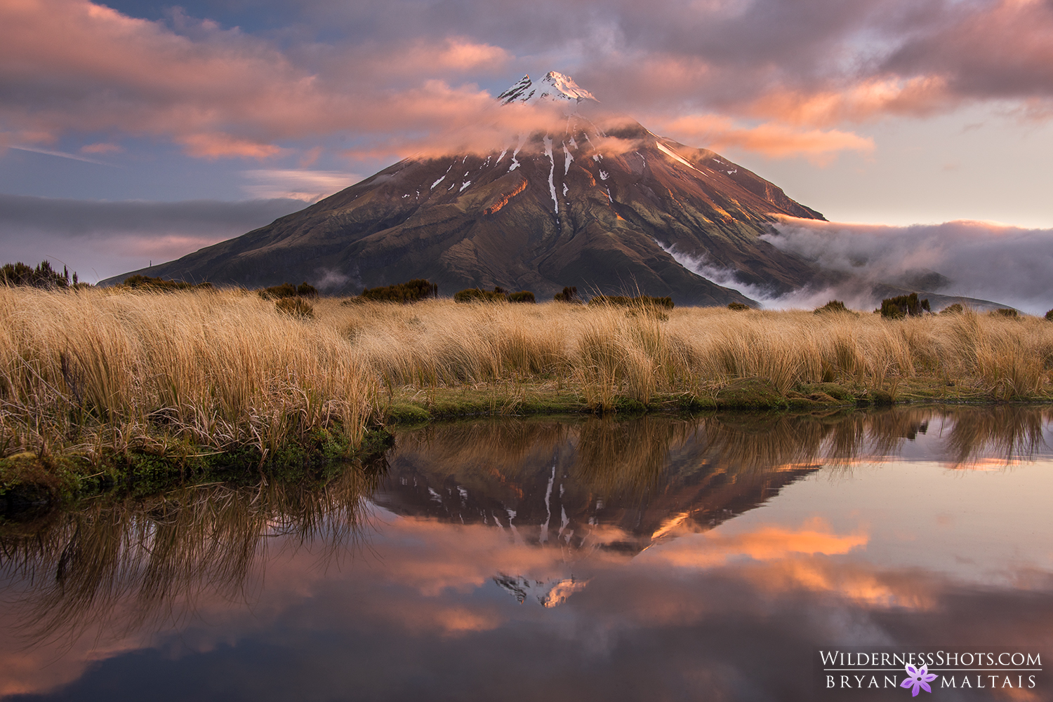 New Zealand North Island Landscapes
