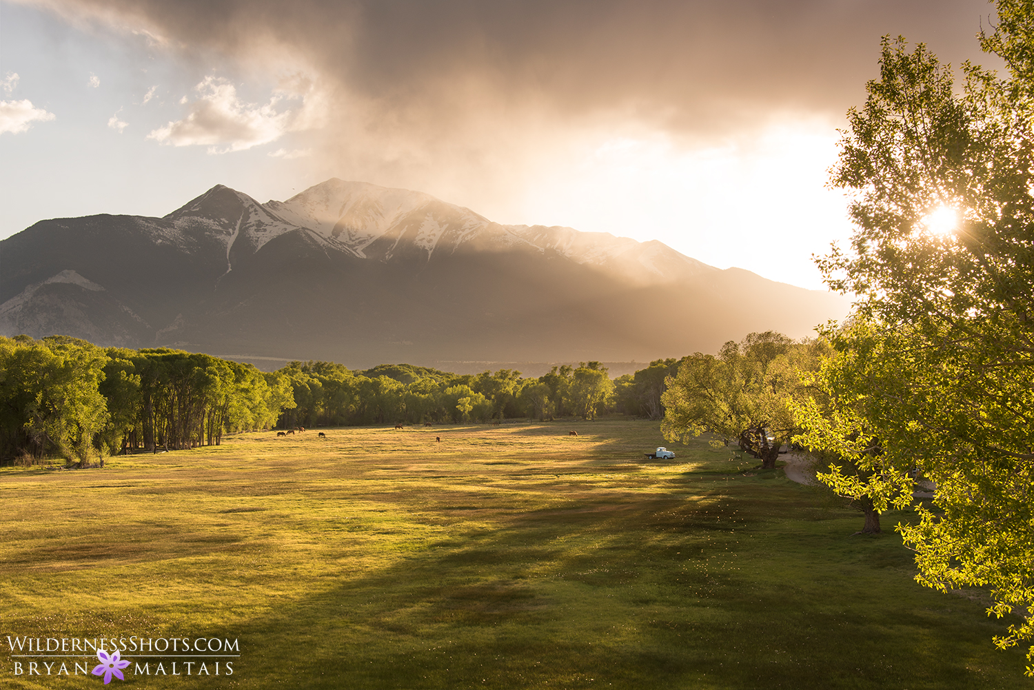 Mt Princeton Colorado Photography
