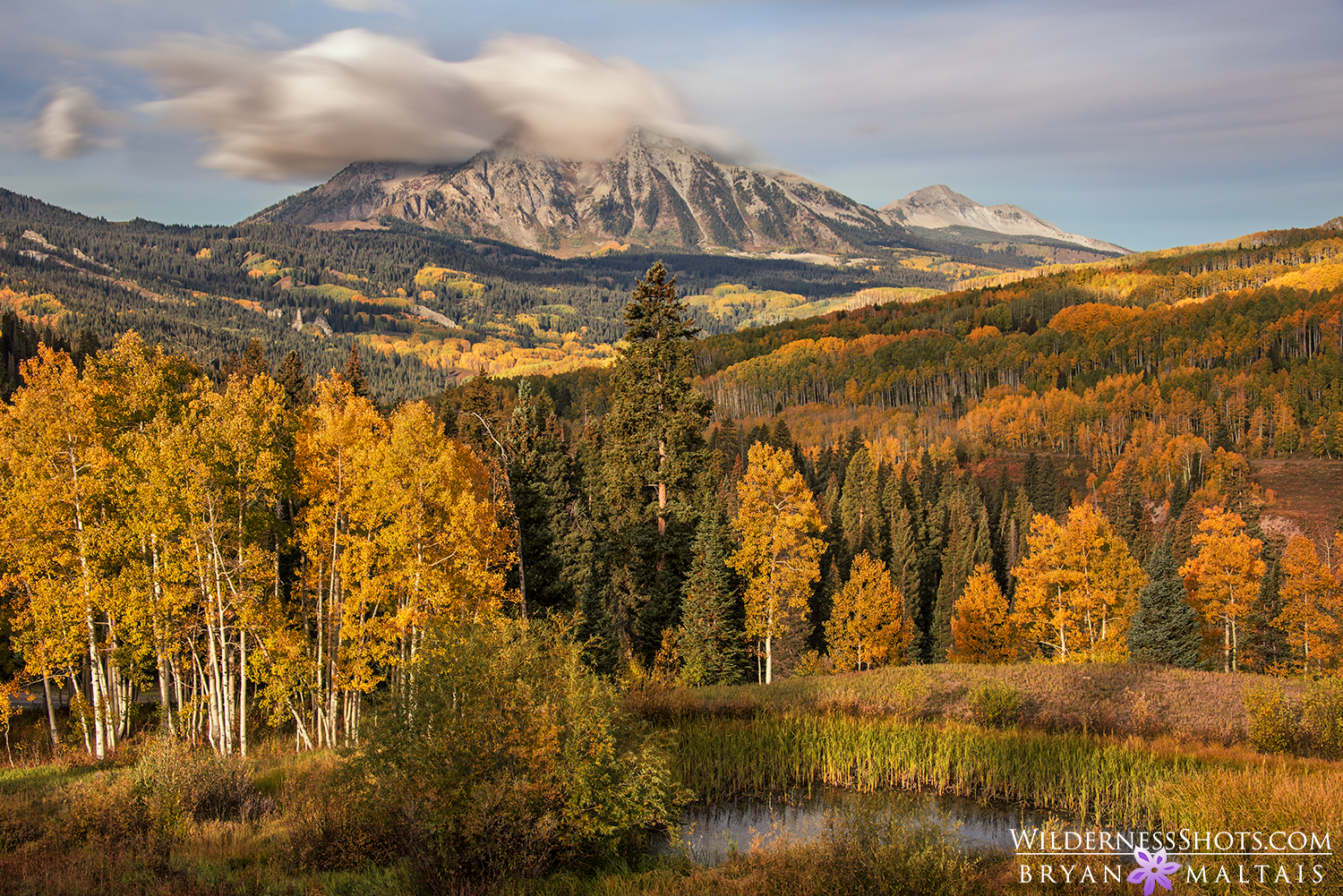 East Beckwith Mountain Fall Colors Crested Butte Photos