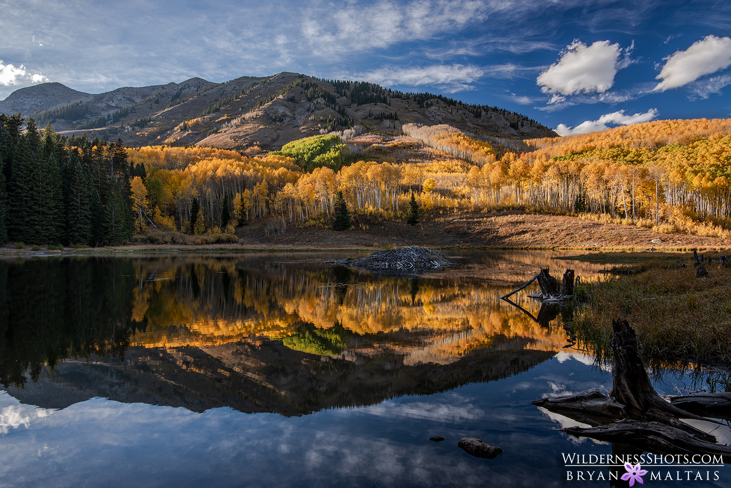 Crested Butte Photography